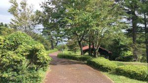 だるま山高原の細道