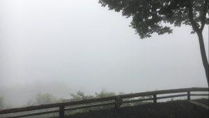 霧のキャンプ場