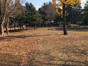 東京都立赤塚公園のバーベキュー広場