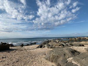 白浜フラワーパークの海岸サイト