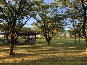 南の池公園キャンプ場①