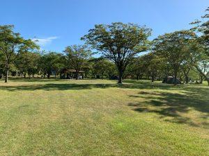 南の池公園キャンプ場②