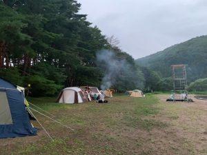 秋山浜キャンプ場のサイト