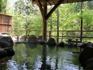 日光・まなかの森の温泉