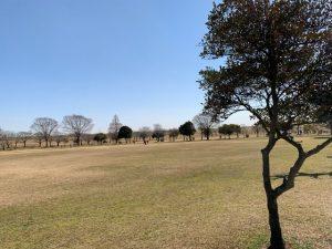 野田市スポーツ公園の広場②