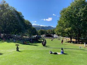 ニューアコの広い芝生